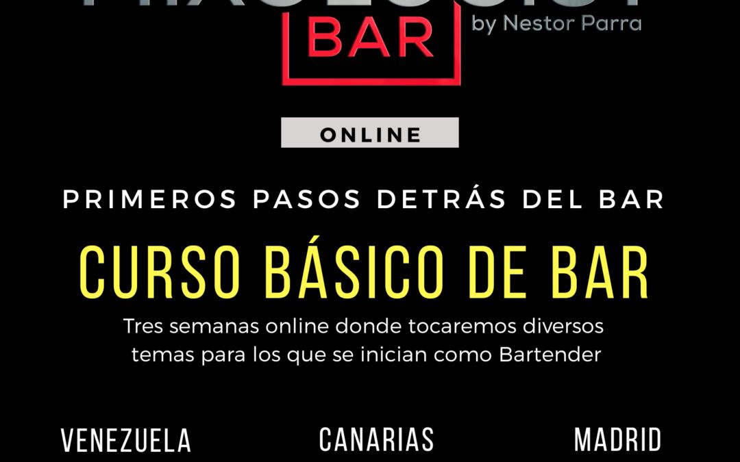 Primeros Pasos en el Bar